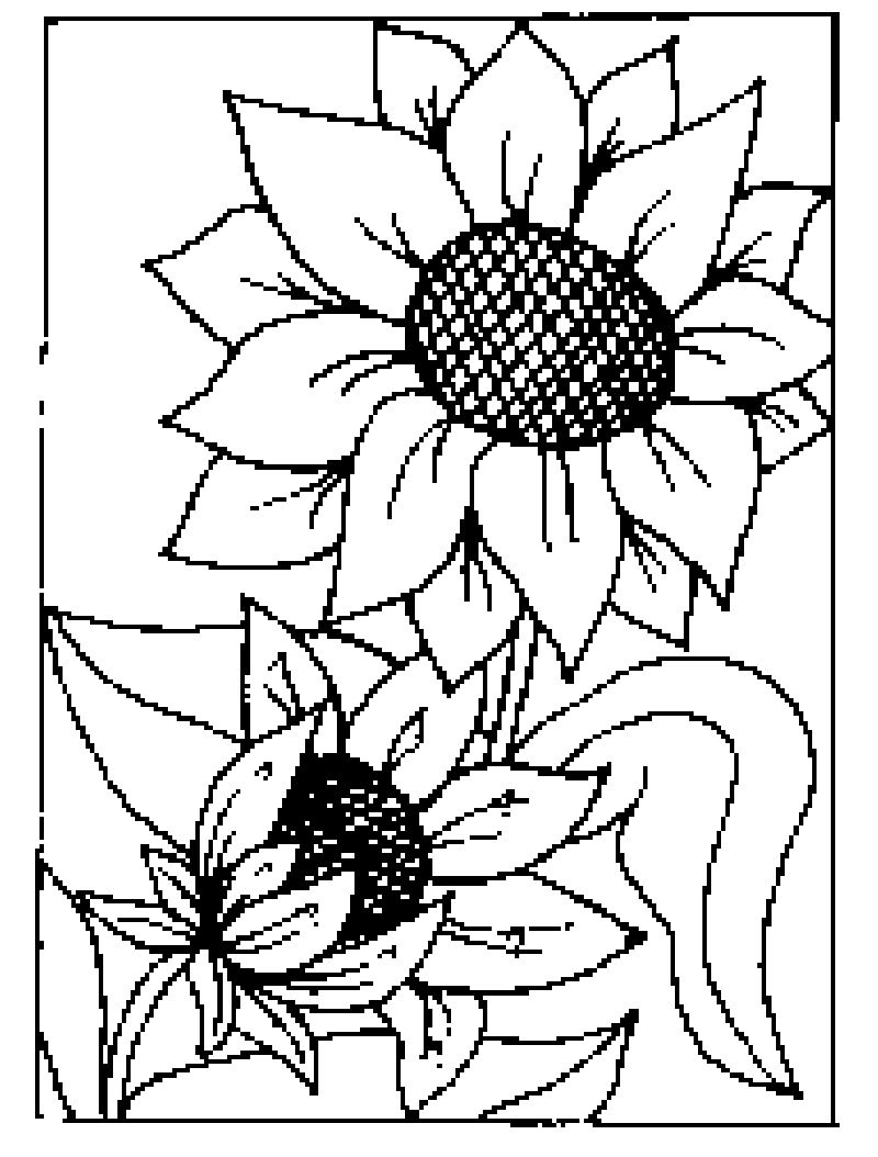 Großartig Malvorlagen Sonnenblume Ideen - Malvorlagen Von Tieren ...